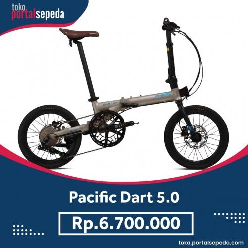 pacific-dart-5.jpeg