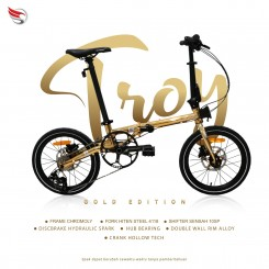 element troy gold chrome 10